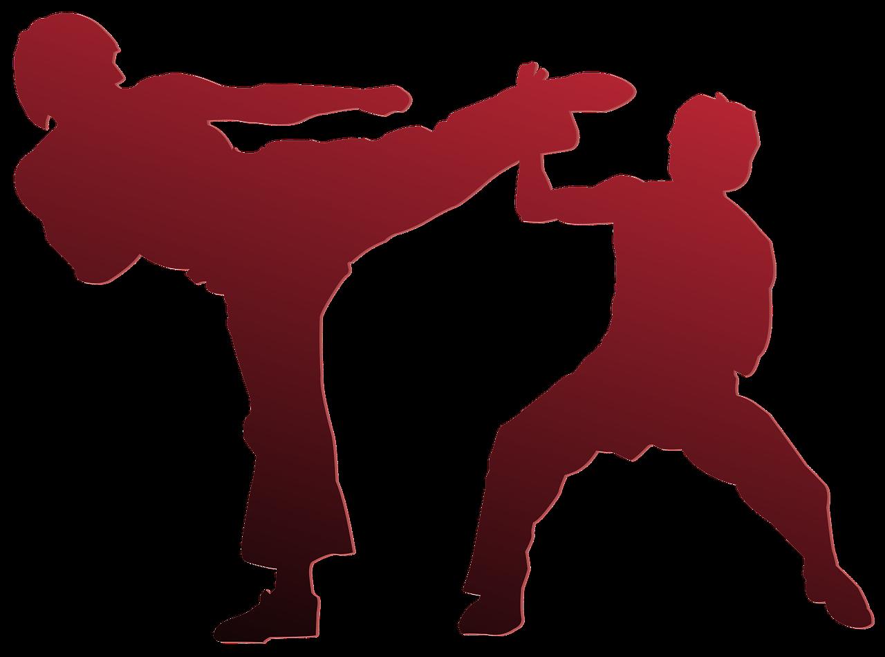 Karate bei Magdeburg